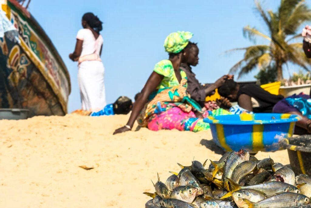 do Afryki z dzieckiem, plaża w Gambii.