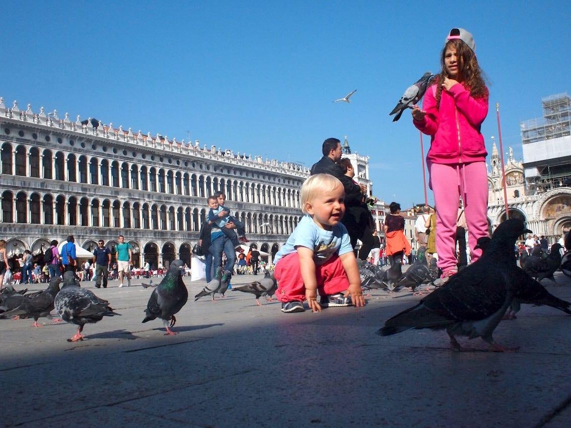 Największa atrakcja dla dzieci – gołębie.