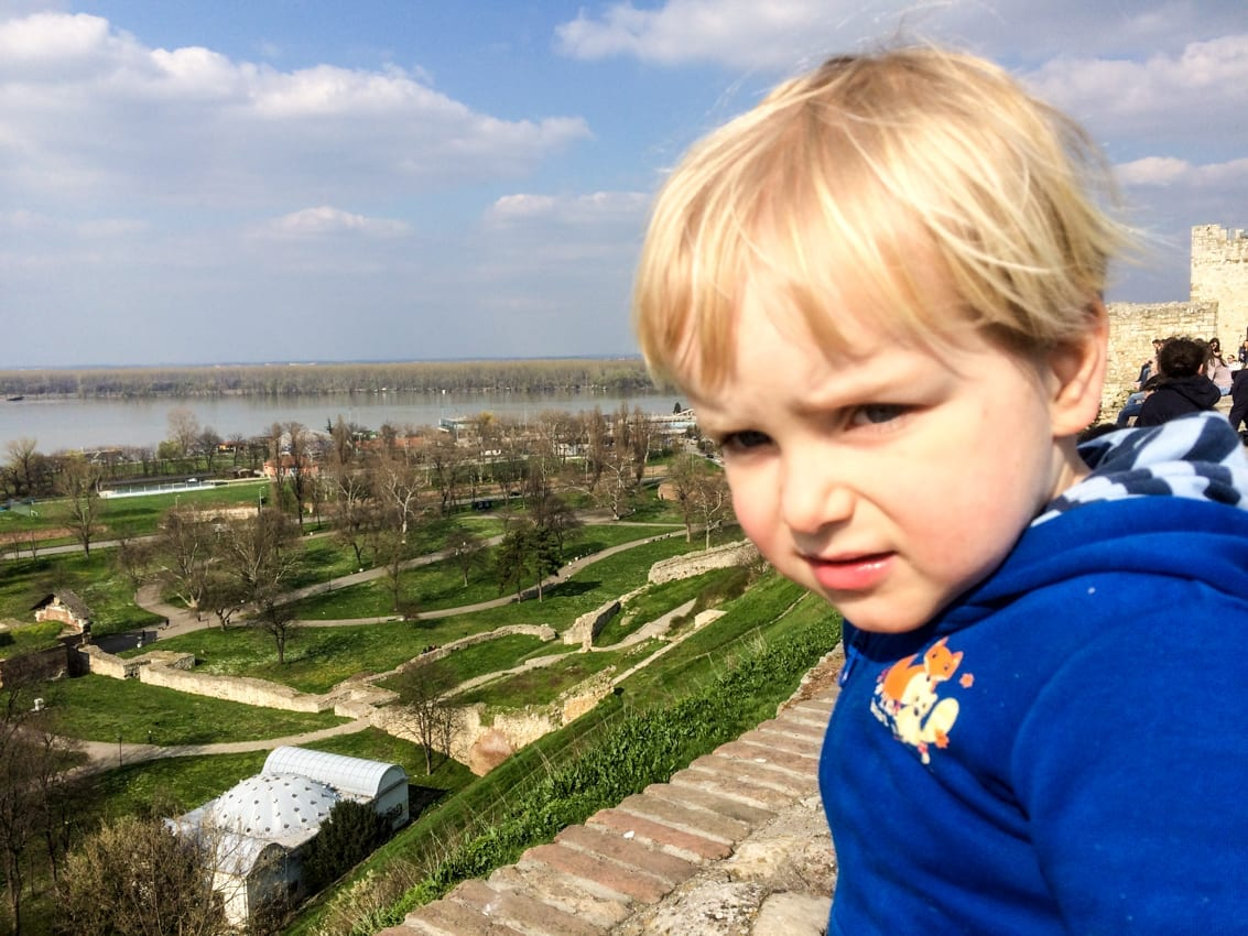 Chruczek z widokiem na Dunaj.