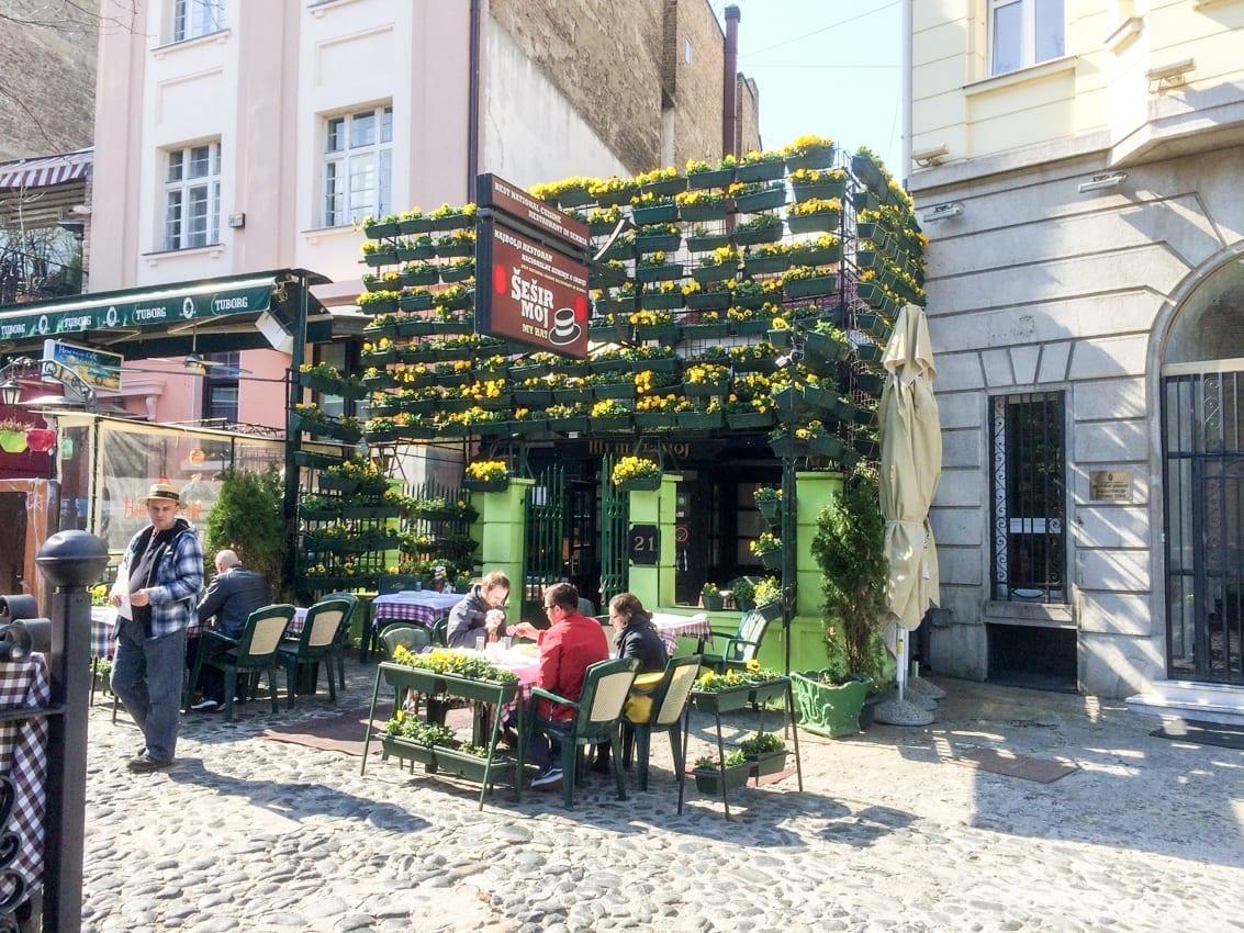 Wiosna w Belgradzie