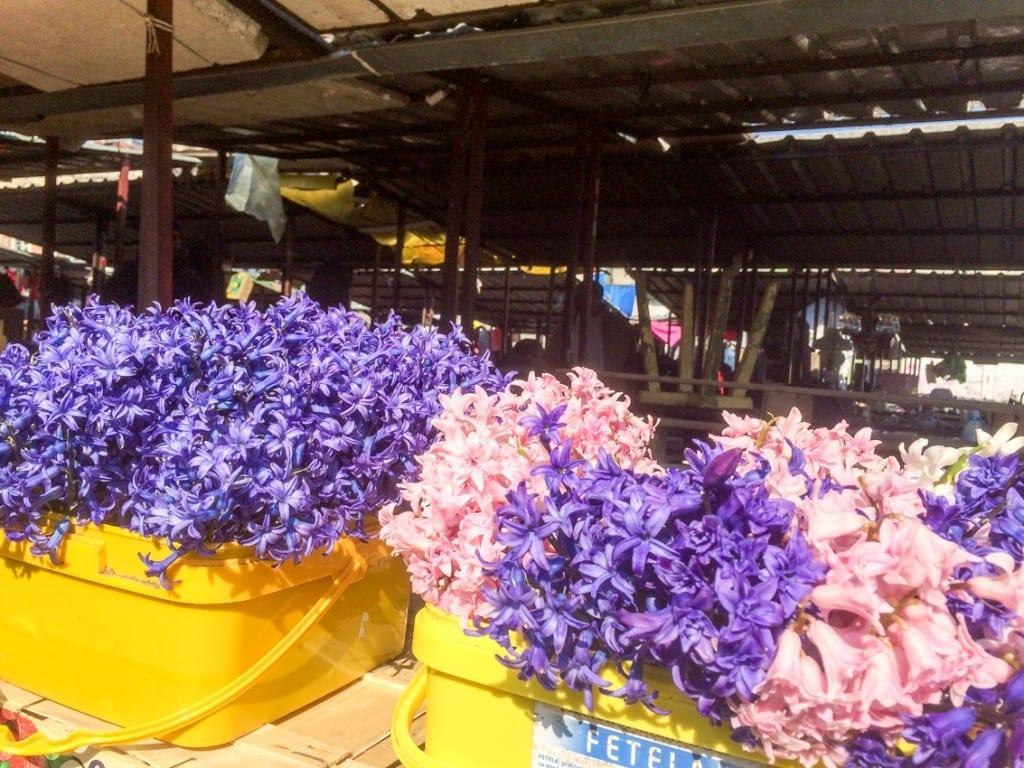 Ziemniaki, pomidory i kwiaty. Zwykły zestaw do kupienia na targu w Belgradzie.