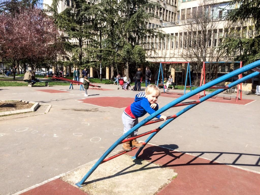 Chruczek Belgrad uwielbia.