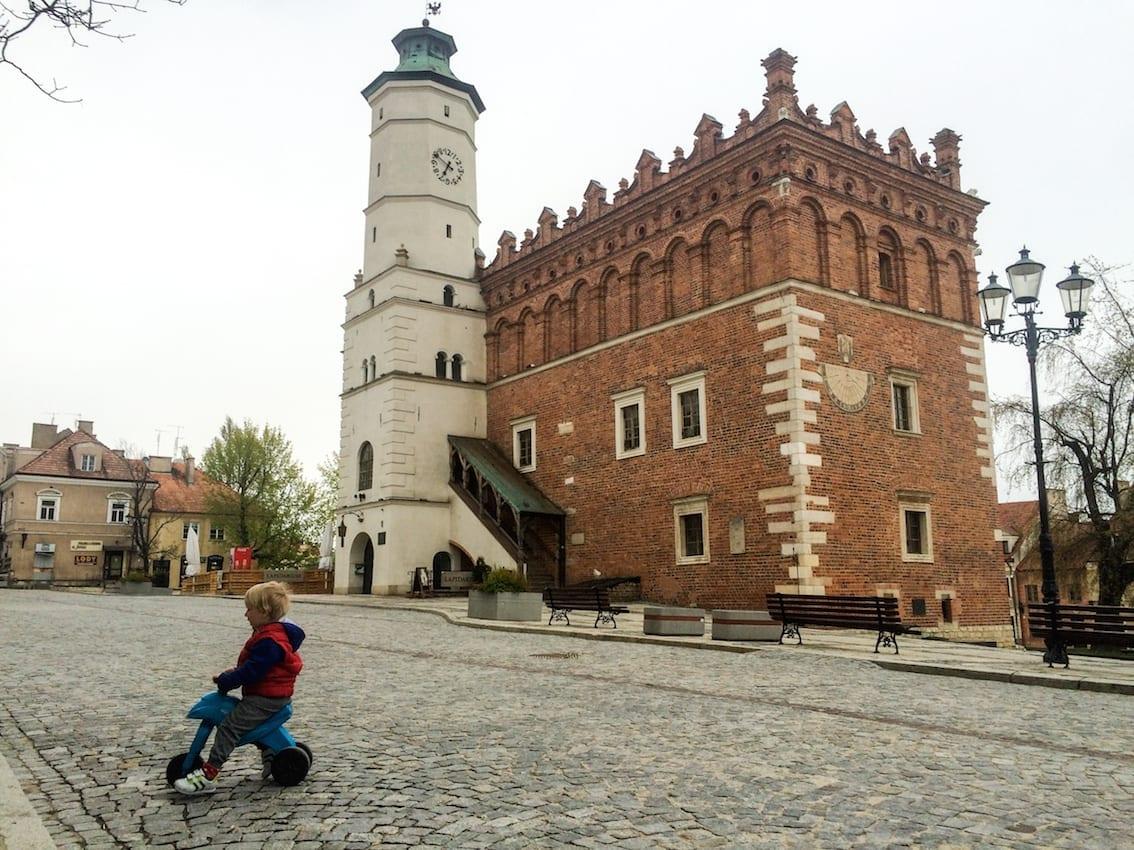 Chruczek na rynku w Sandomierzu.