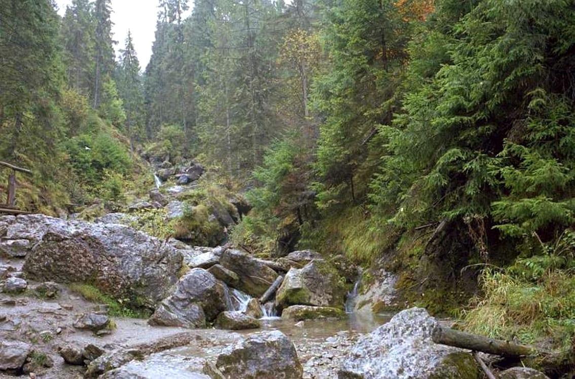 Wąwóz Homole – jedna z największych atrakcji Małopolski.
