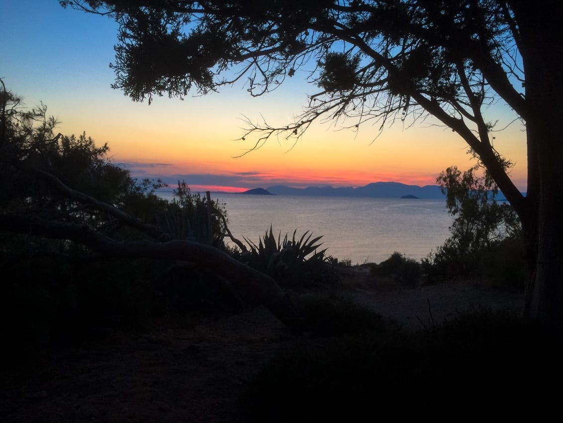 Piękny zachód słońca dwa kroki od plaży.