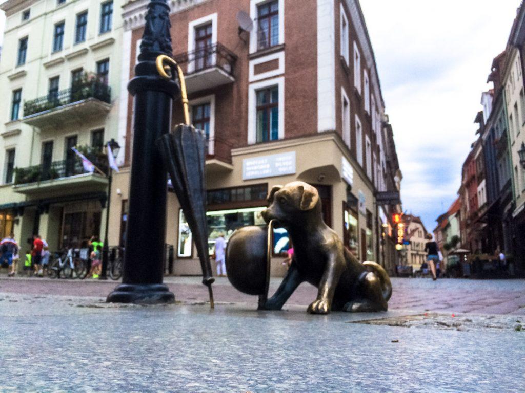 Pies Filuś wciąż wierny swemu panu – profesorowi Filutkowi.