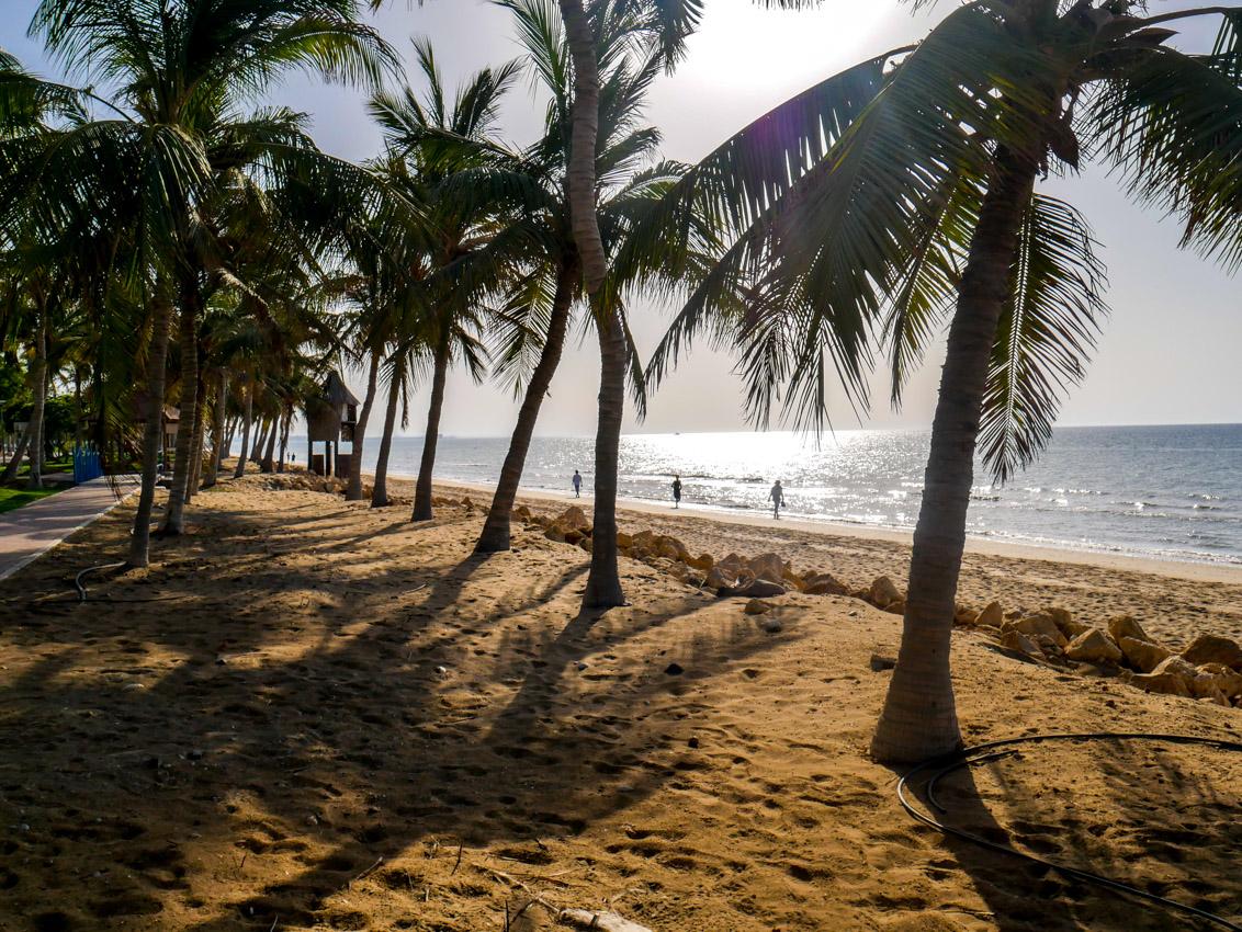 Podzwrotnikowy klimat sytuuje Oman w kręgu rajskim.