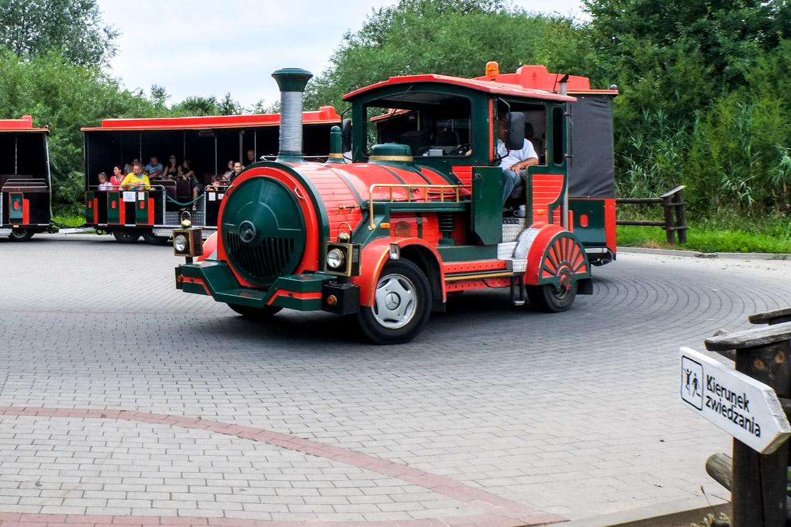 Pociąg wozi turystów po atrakcjach Jurapark Krasiejów