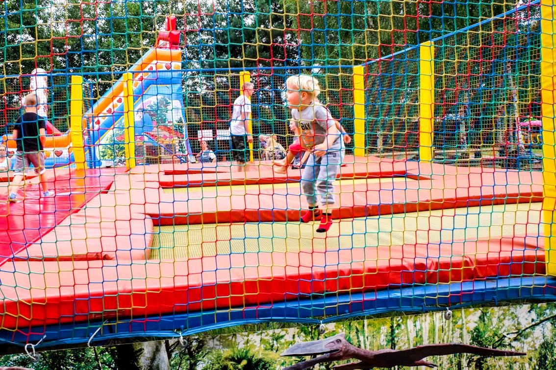 Jurapark Krasiejów to nie tylko dinozaury. Wili skacze w parku trampolin