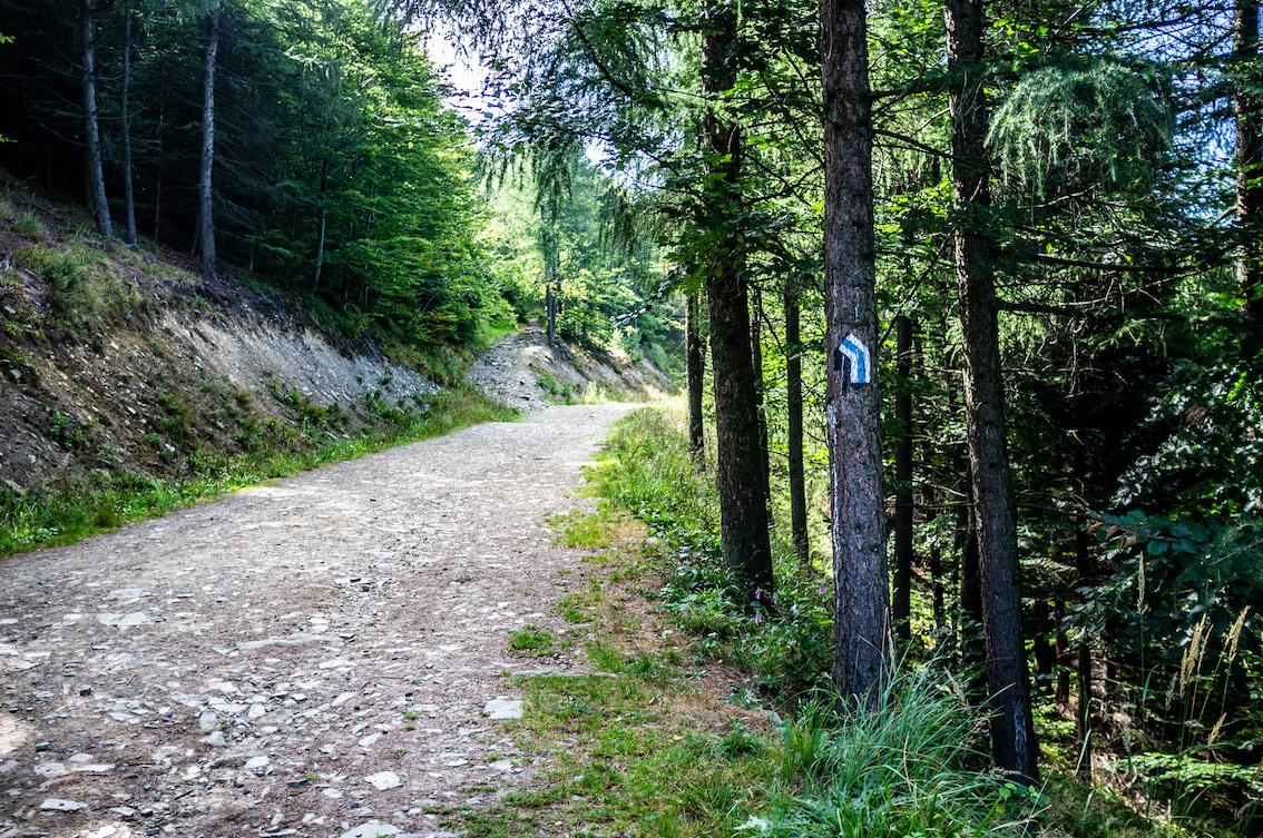 Wygodna szeroka droga kończy się i wspinamy się na Czupel stromą ścieżką.