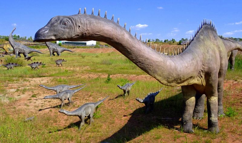 Tak kiedyś wyglądał świat w czasach dinozaurów. Dziś możemy to podziwiać w Jurapark Krasiejów