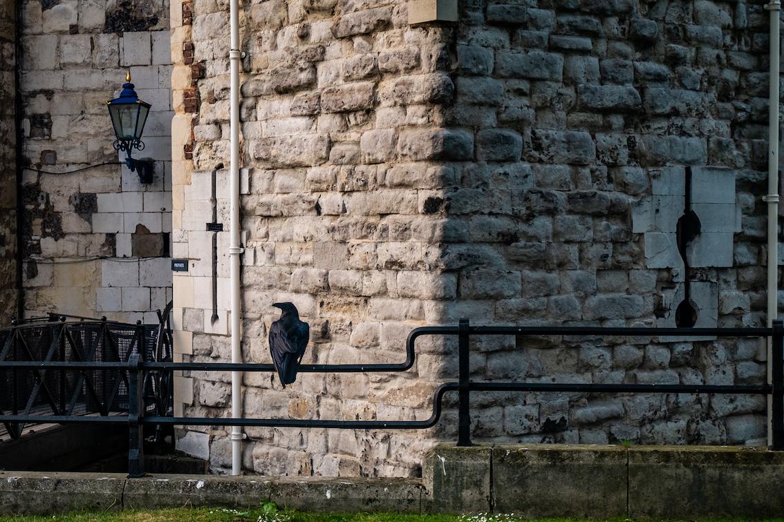 Od wieków Tower budzi grozę jako dawne więzienie, a teraz miejsce, gdzie Londyn trzyma swoje najkosztowniejsze precjoza.