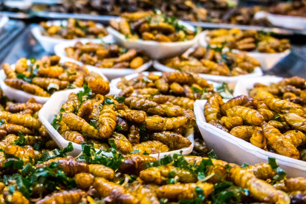 Najbardziej obrzydliwe jedzenie na świecie – stragany z robalami w Tajlandii.